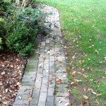 Pavers stained with mildew.