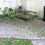 Before treatment of moss and mildew stains.