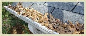 Clogged Gutters Can Cause Expensive Damage