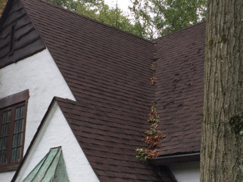 NJ Roof Cleaning After